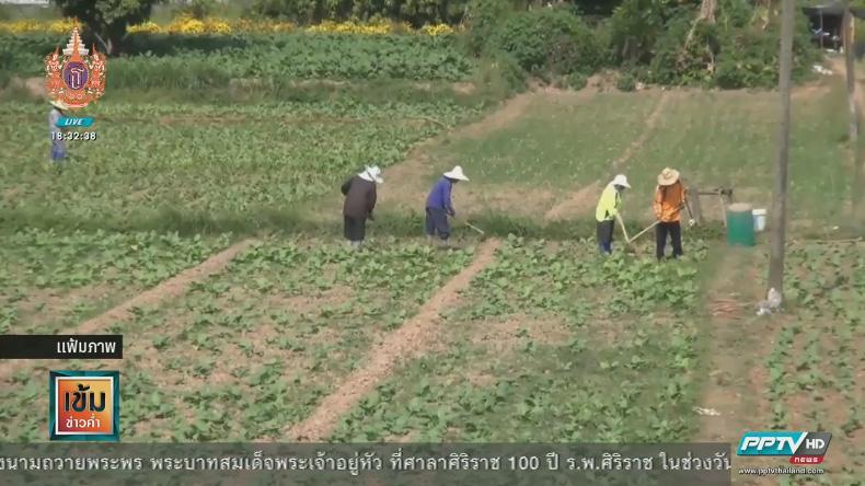 นายกฯ ยาหอมชาวไร่-นา-สวน สั่งเปิดตลาดเกษตรกรปลอดพ่อค้าคนกลาง