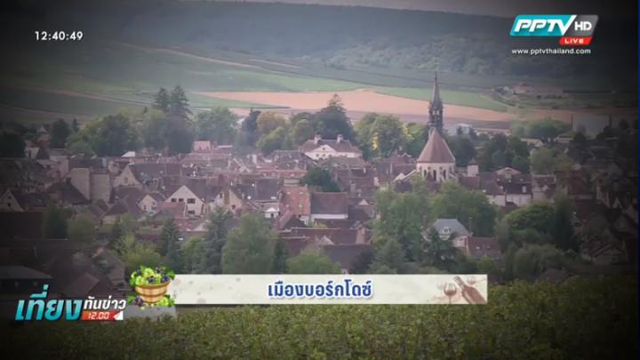 เก็บองุ่นในแซงต์ เอมิลิยง งานในฝันของชาวฝรั่งเศส (คลิป)
