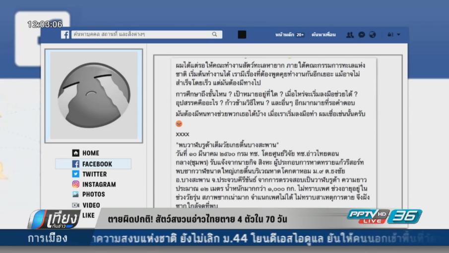 ตายผิดปกติ! สัตว์สงวนอ่าวไทยตาย 4 ตัวใน 70 วัน