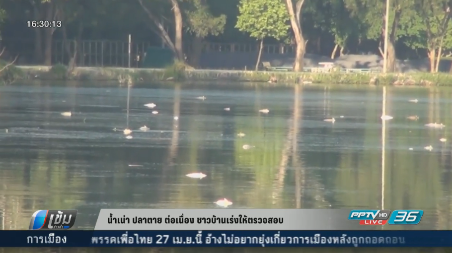 น้ำเน่า-ปลาตาย ต่อเนื่อง ชาวบ้านเร่งให้ตรวจสอบ
