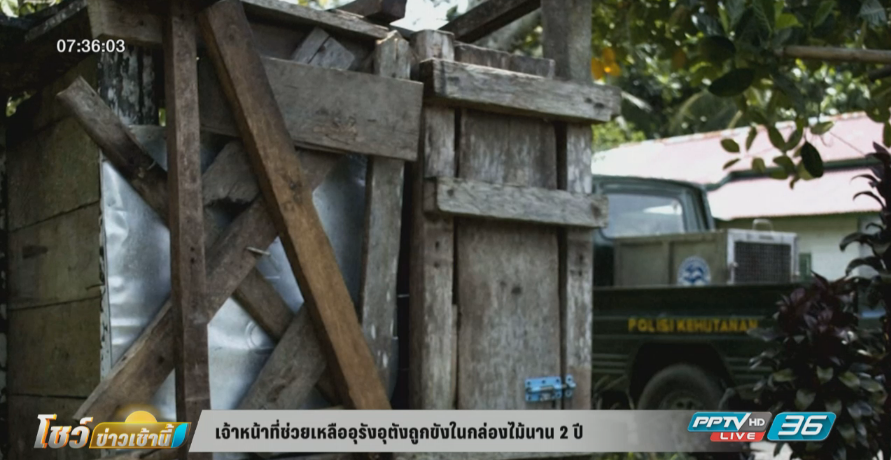 เจ้าหน้าที่ช่วยเหลืออุรังอุตังถูกขังในกล่องไม้นาน 2 ปี