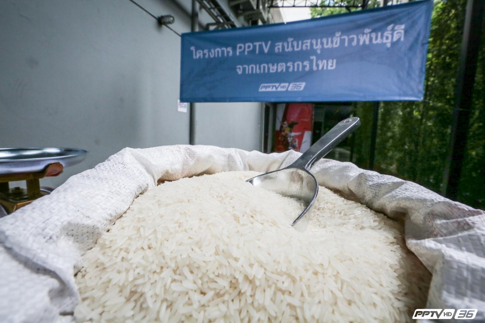 """""""พีพีทีวี"""" จัด """"PPTV สนับสนุนข้าวพันธุ์ดี จากเกษตรกรไทย"""""""