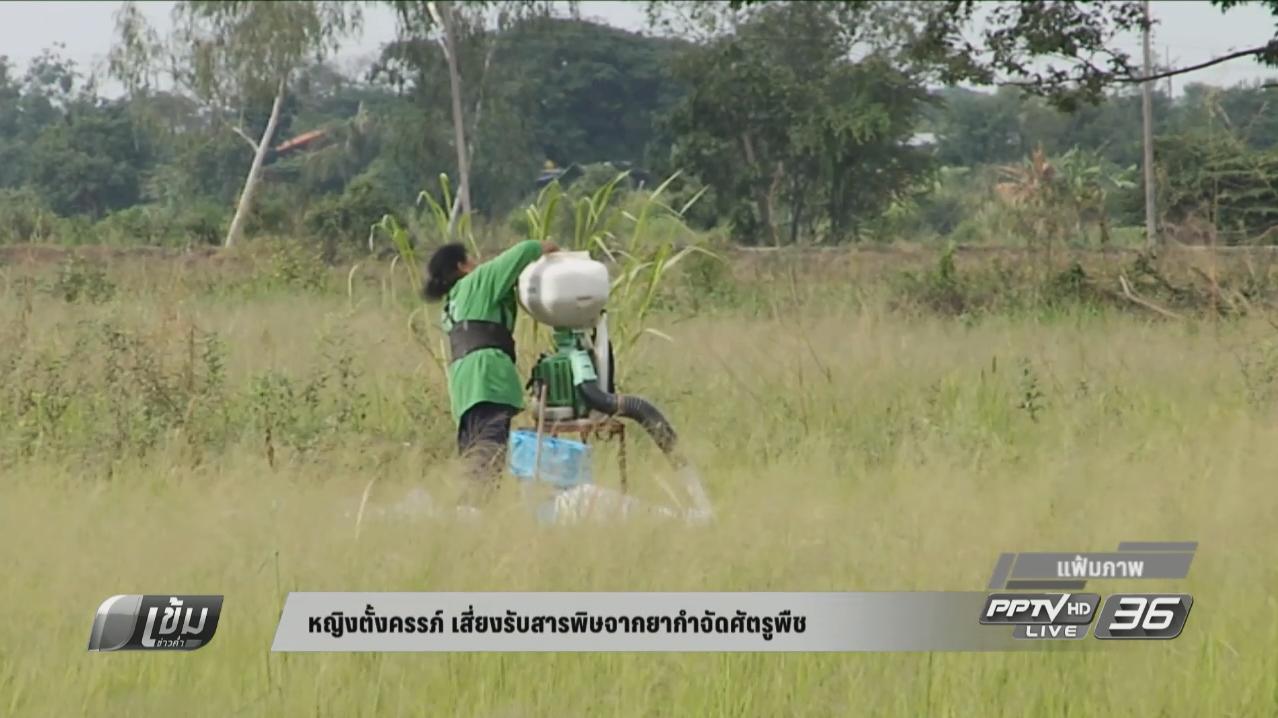 หญิงตั้งครรภ์ เสี่ยงรับสารพิษจากยากำจัดศัตรูพืช ทำเด็กพัฒนาการช้า