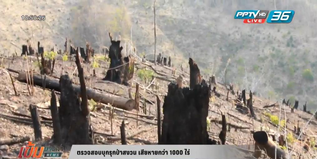 ตรวจสอบบุกรุกป่าสงวน เสียหายกว่า 1000 ไร่