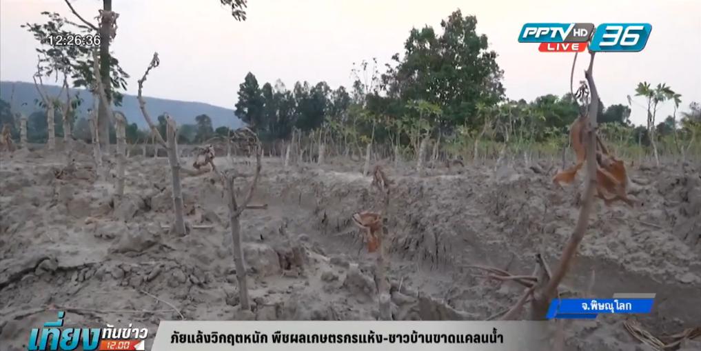 ภัยแล้งวิกฤตหนัก พืชผลเกษตรกรแห้ง-ชาวบ้านขาดแคลนน้ำ