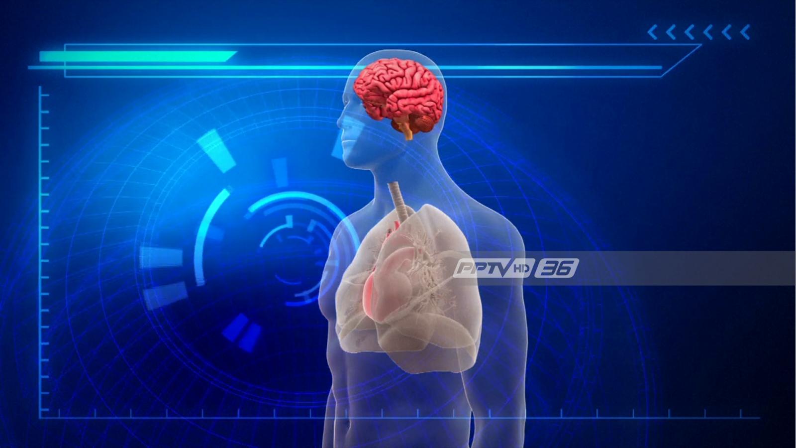ความหวังใหม่! อินเดียเตรียมทดลองรักษาผู้ป่วยสมองตาย