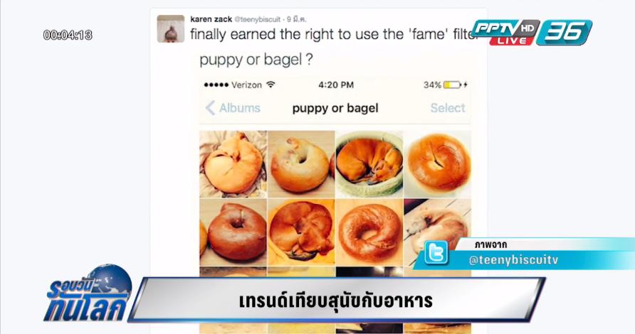 Social Buzz เทรนด์เทียบสุนัขกับอาหาร