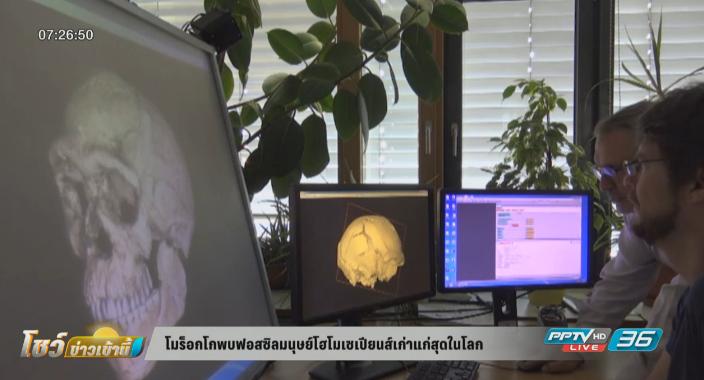 โมร็อกโกพบฟอสซิลมนุษย์โฮโมเซเปียนส์เก่าแก่สุดในโลก