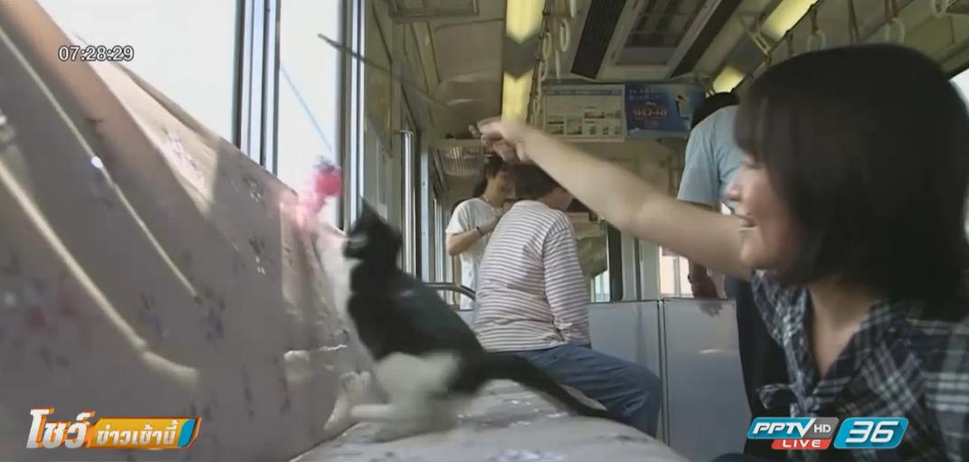 ญี่ปุ่นจัดกิจกรรมรถไฟขบวนน้องแมว