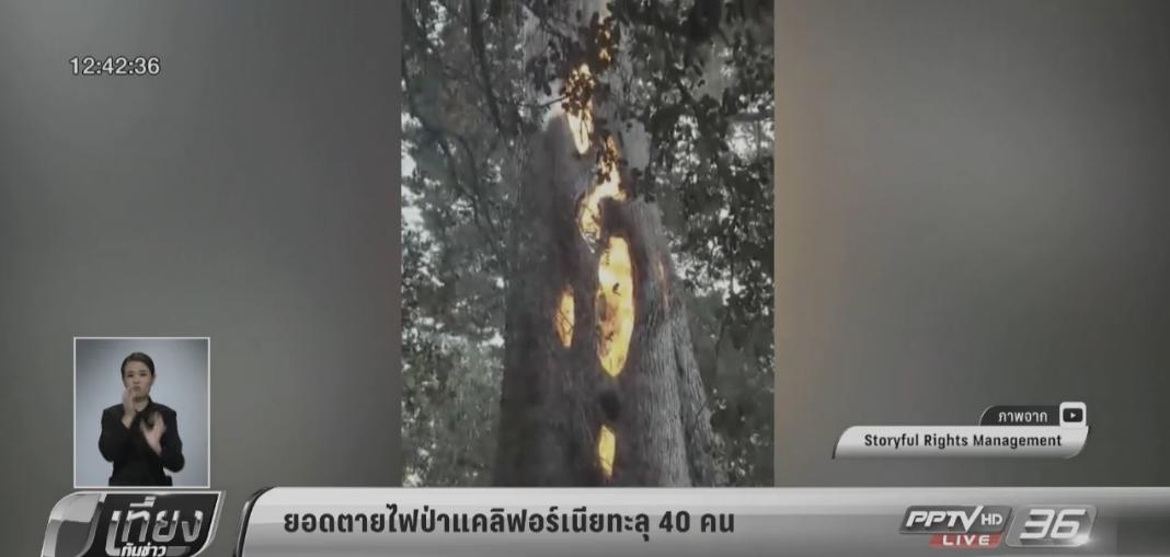 ยอดตายไฟป่าแคลิฟอร์เนียทะลุ 40 คน