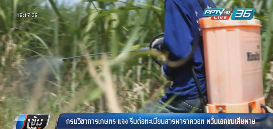 กรมวิชาการเกษตรแจงรีบต่อทะเบียนสารพาราควอตหวั่นเอกชนเสียหาย