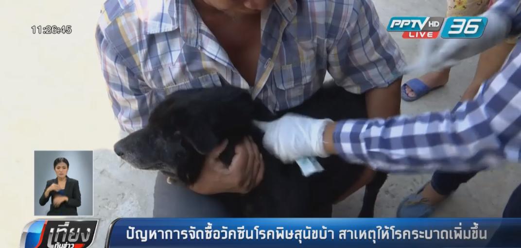 ปัญหาการจัดซื้อวัคซีนโรคพิษสุนัขบ้า สาเหตุให้โรคระบาดเพิ่มขึ้น