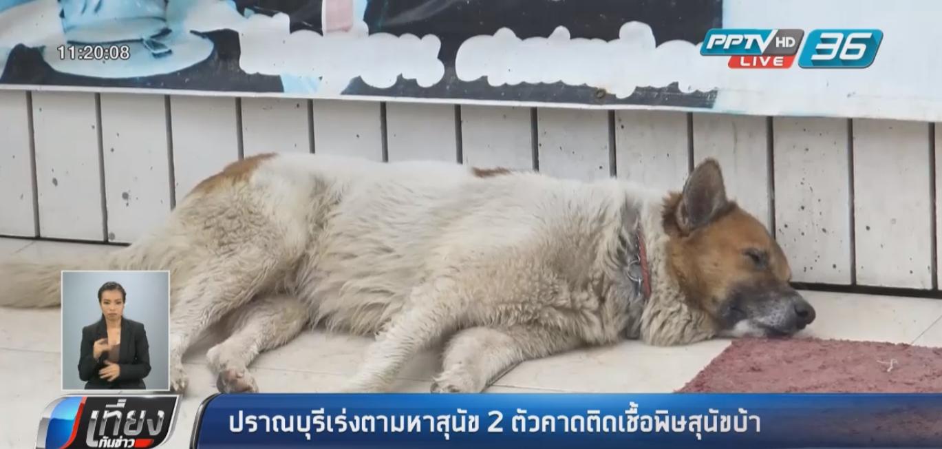 เร่งฉีดวัคซีนพิษสุนัขบ้า ต.หินเหล็กไฟ หลังพบผู้เสียชีวิต หวั่นแพร่ระบาด