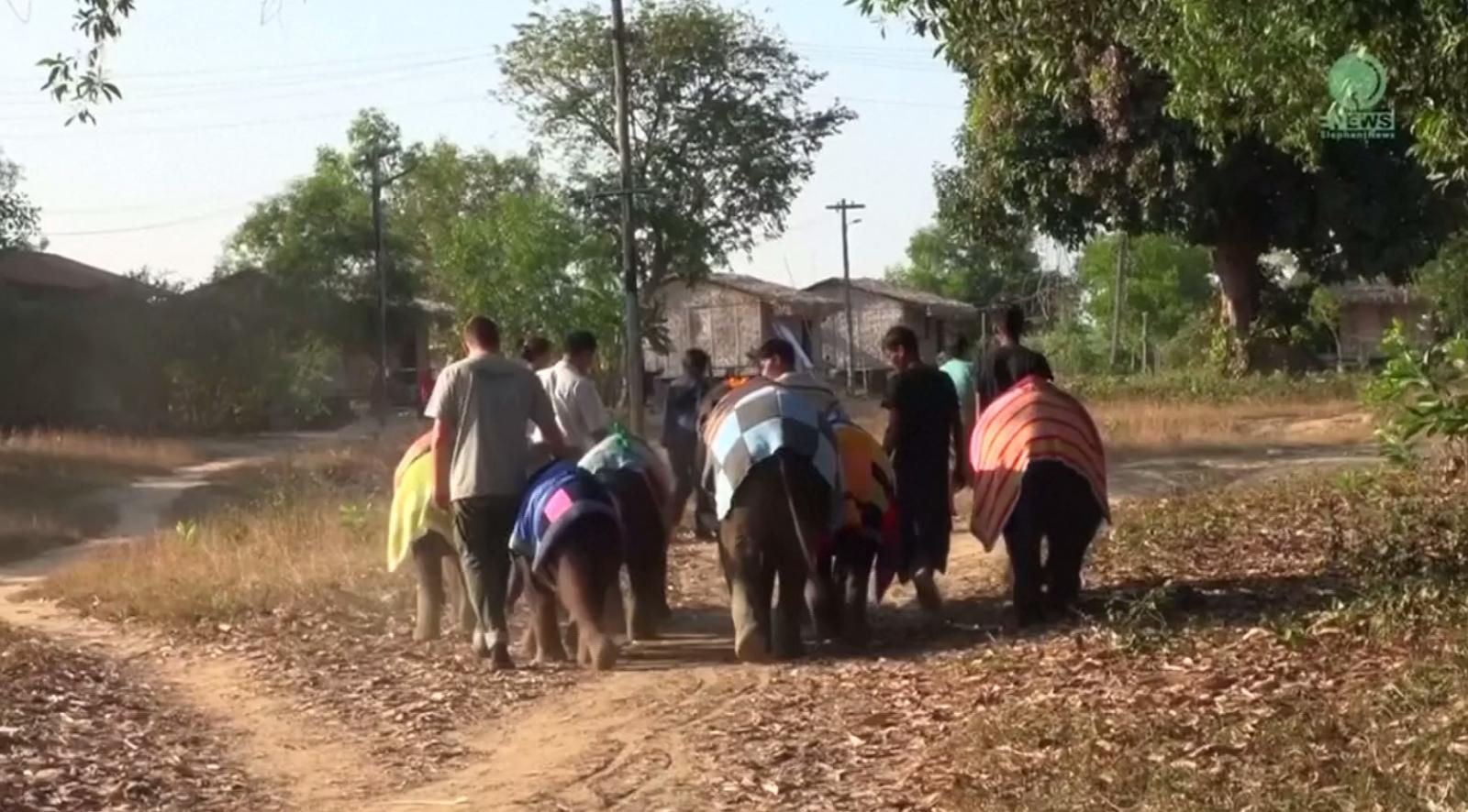 องค์การอนุรักษ์ช้างของไทย มอบเครื่องกันหนาวให้