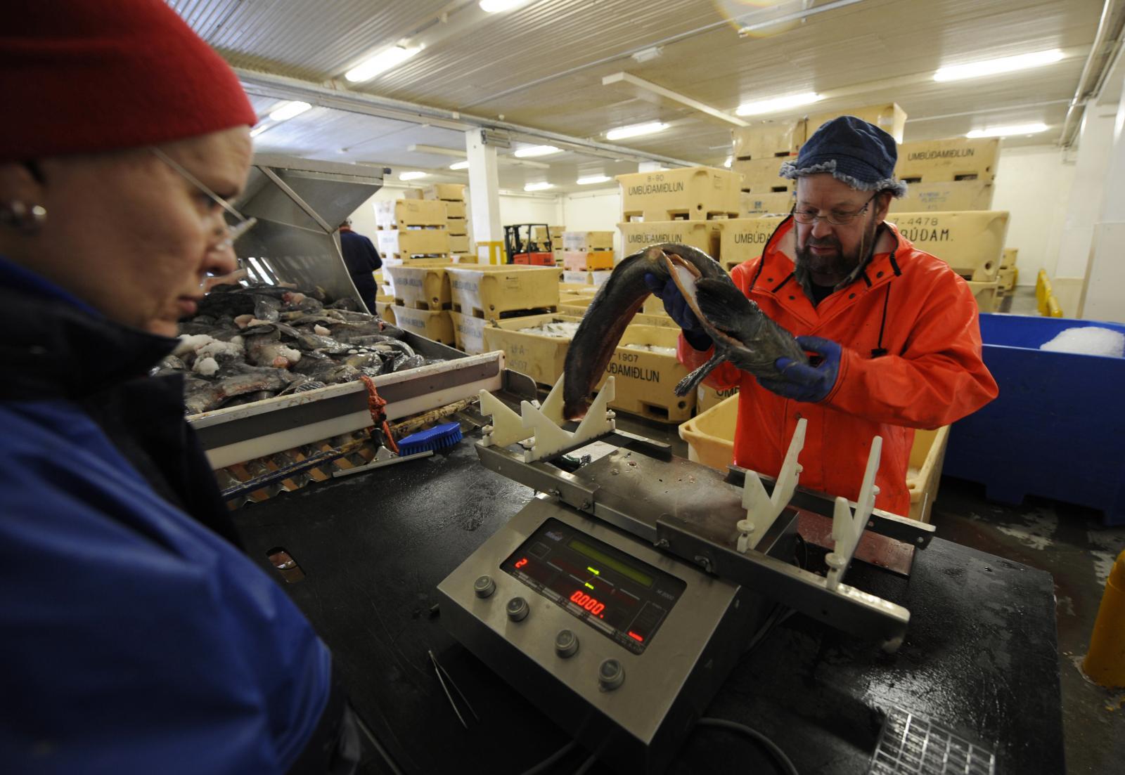 ไอซ์แลนด์บังคับใช้กฎหมายจ่ายค่าจ้างชาย-หญิงเท่าเทียมกัน