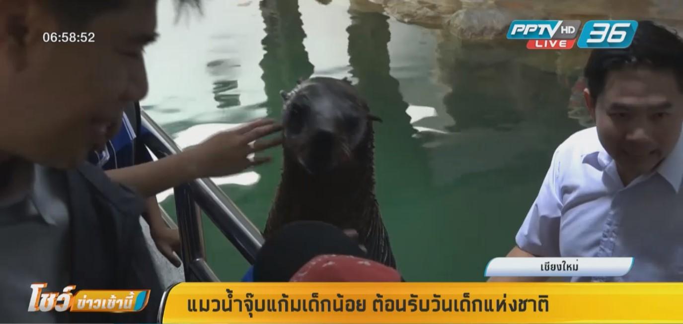แมวน้ำจุ๊บแก้มเด็กน้อย ต้อนรับวันเด็กแห่งชาติ