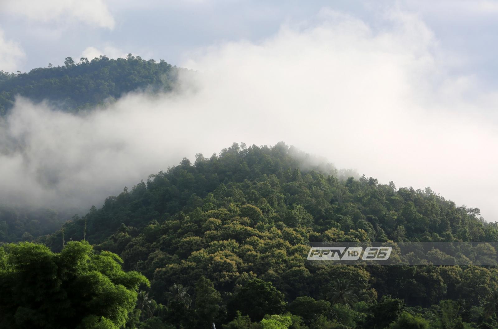 อุตุฯ เผย กทม.มีฝนฟ้าคะนองร้อยละ 30 อุณหภูมิลดลง 2-4 องศา