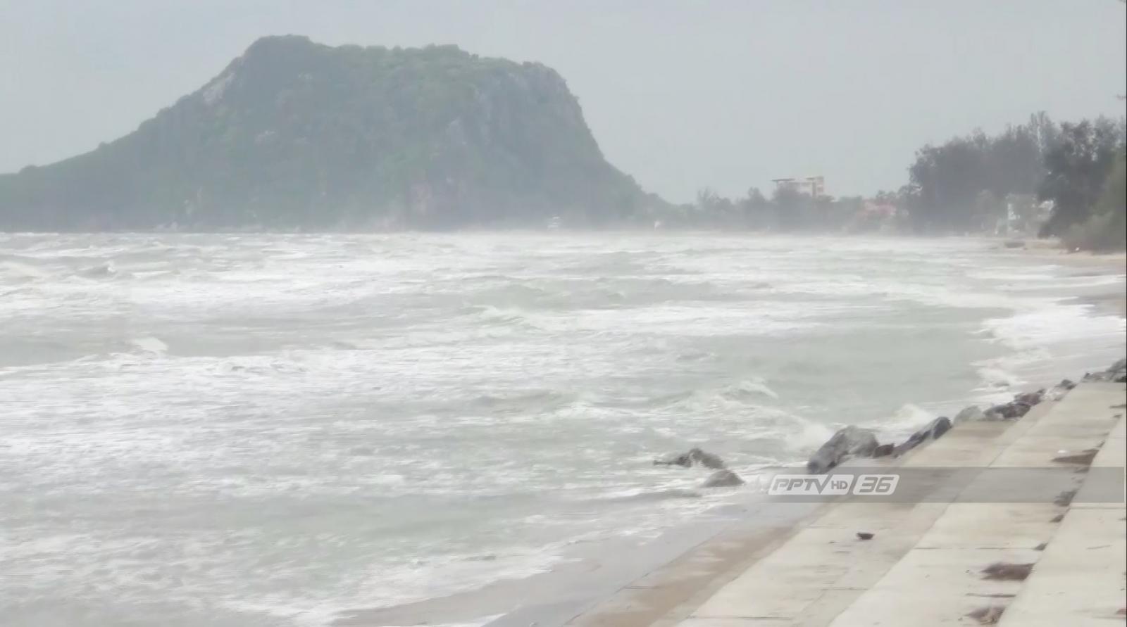 พบโลมาหัวบาตรเกยหาดปราณบุรีตายตัวที่ 2