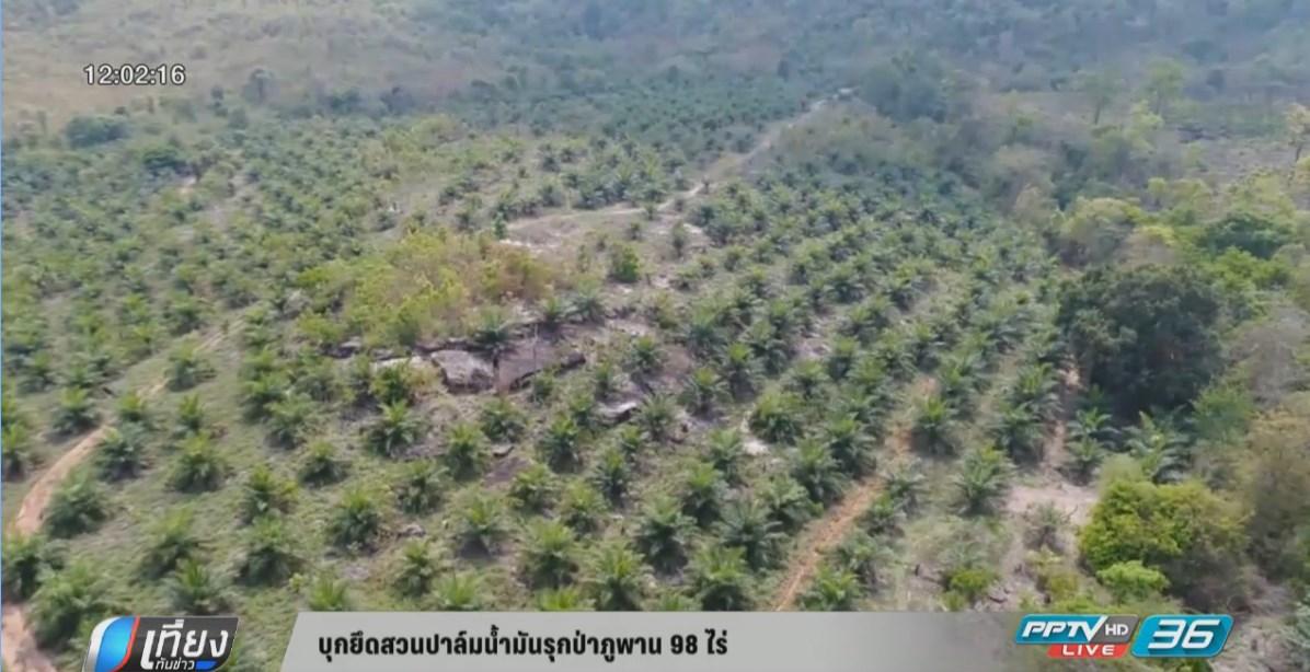 บุกยึดสวนปาล์มน้ำมันรุกป่าภูพาน 98 ไร่
