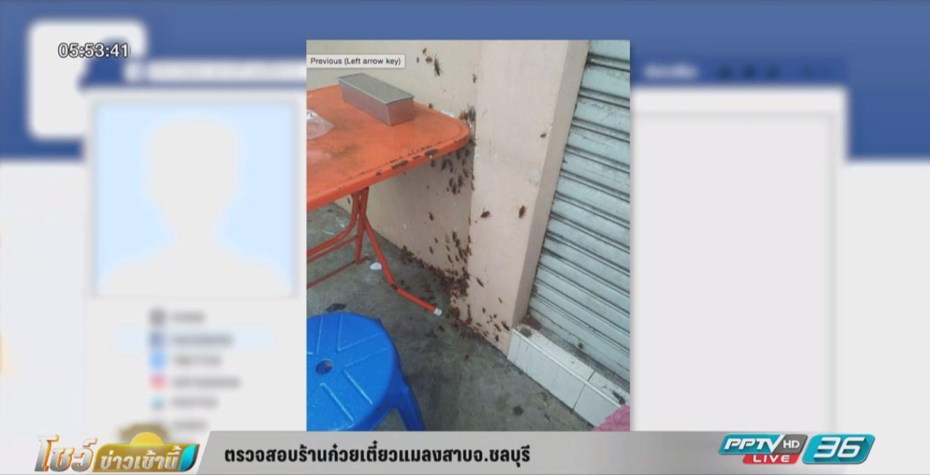 ตรวจสอบร้านก๋วยเตี๋ยวแมลงสาบ จ.ชลบุรี