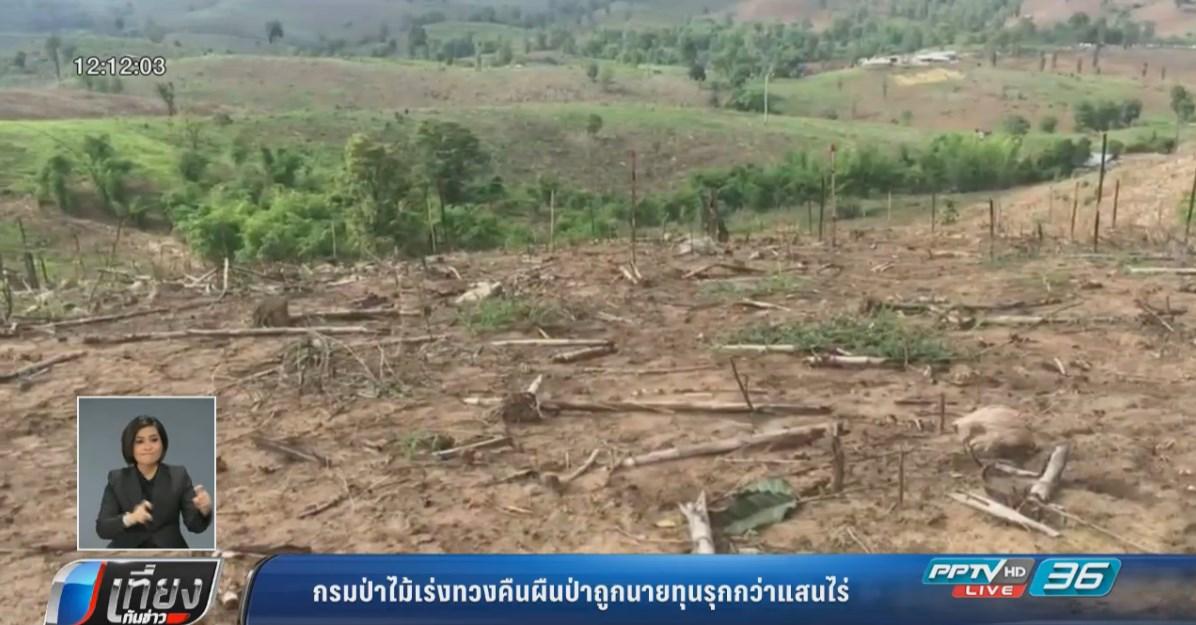 กรมป่าไม้เร่งทวงคืนผืนป่าถูกนายทุนรุกกว่าแสนไร่