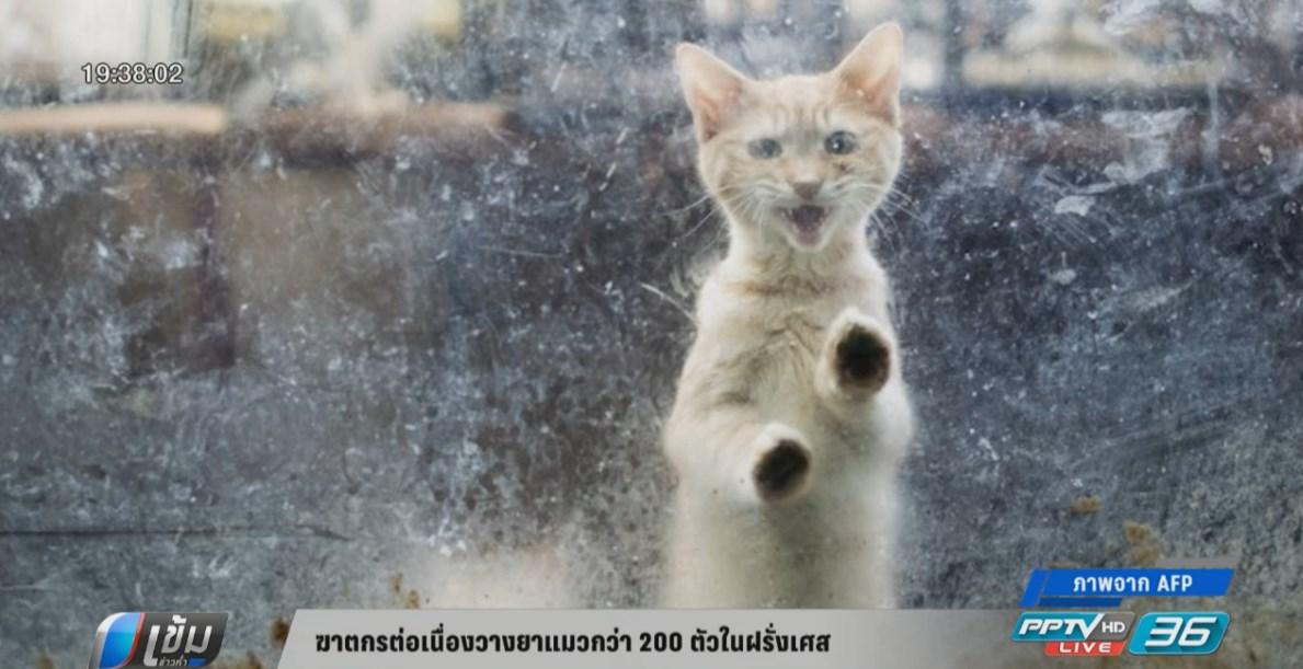 ฆาตกรต่อเนื่องวางยาแมวกว่า 200 ตัวในฝรั่งเศส
