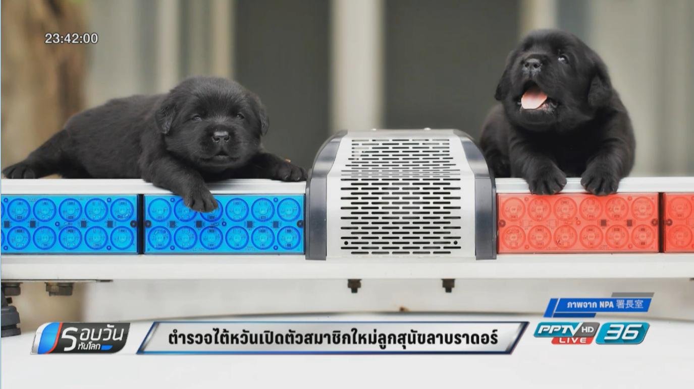 ตำรวจไต้หวันเปิดตัวสมาชิกใหม่ลูกสุนัขลาบราดอร์