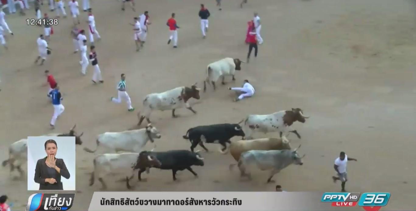 นักสิทธิสัตว์ขวางมาทาดอร์สังหารวัวกระทิง