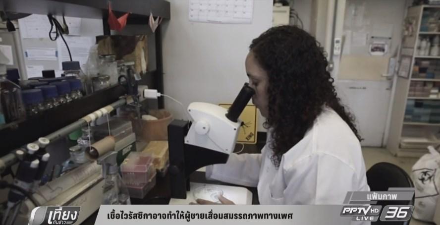 เชื้อไวรัสซิกาอาจทำให้ผู้ชายเสื่อมสมรรถภาพทางเพศ
