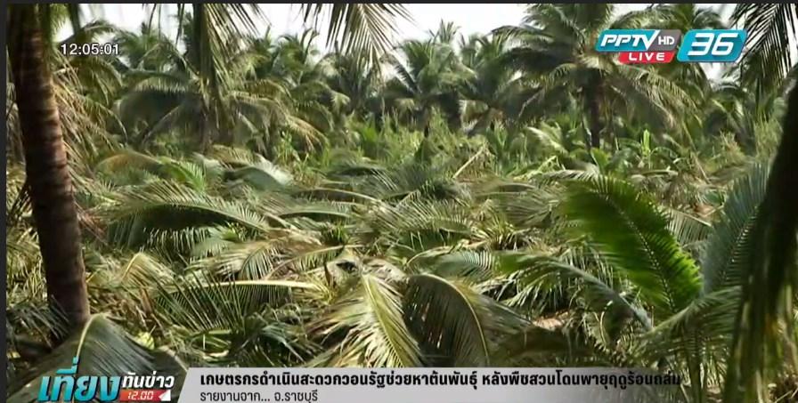 เกษตรกรวอนรัฐช่วยหาต้นพันธุ์ หลังพืชสวนโดนพายุฤดูร้อนถล่ม (คลิป)