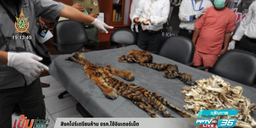 อินโดนีเซียเตรียมเพิ่มโทษลักลอบล่า-ค้าสัตว์ป่า