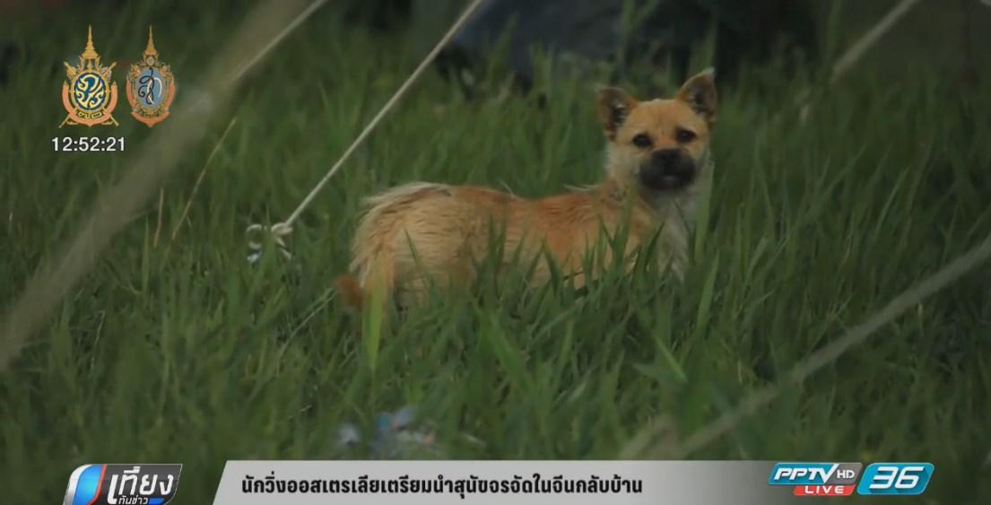 นักวิ่งออสเตรเลียเตรียมนำสุนัขจรจัดในจีนกลับบ้าน (คลิป)