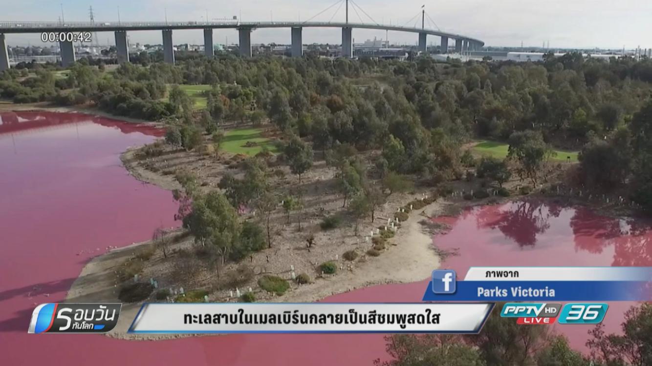ทะเลสาบในเมลเบิร์นกลายเป็นสีชมพูสดใส