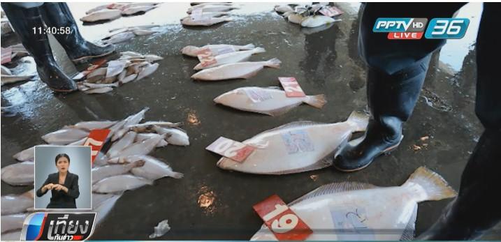 อย.ไม่เปิดชื่อ 12 ร้านนำเข้าปลาจากฟุกุชิมะหวั่นถูกฟ้อง