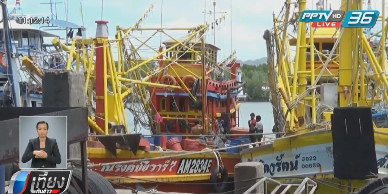 เรือประมงสตูล!ทยอยออกจับปลาแล้ว