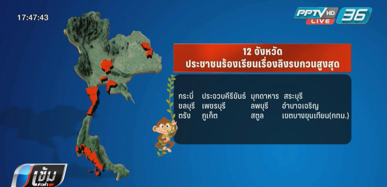 """สนช.เล็งย้าย """"ลิง"""" ส่วนเกินปล่อยเกาะ 191 แห่ง"""