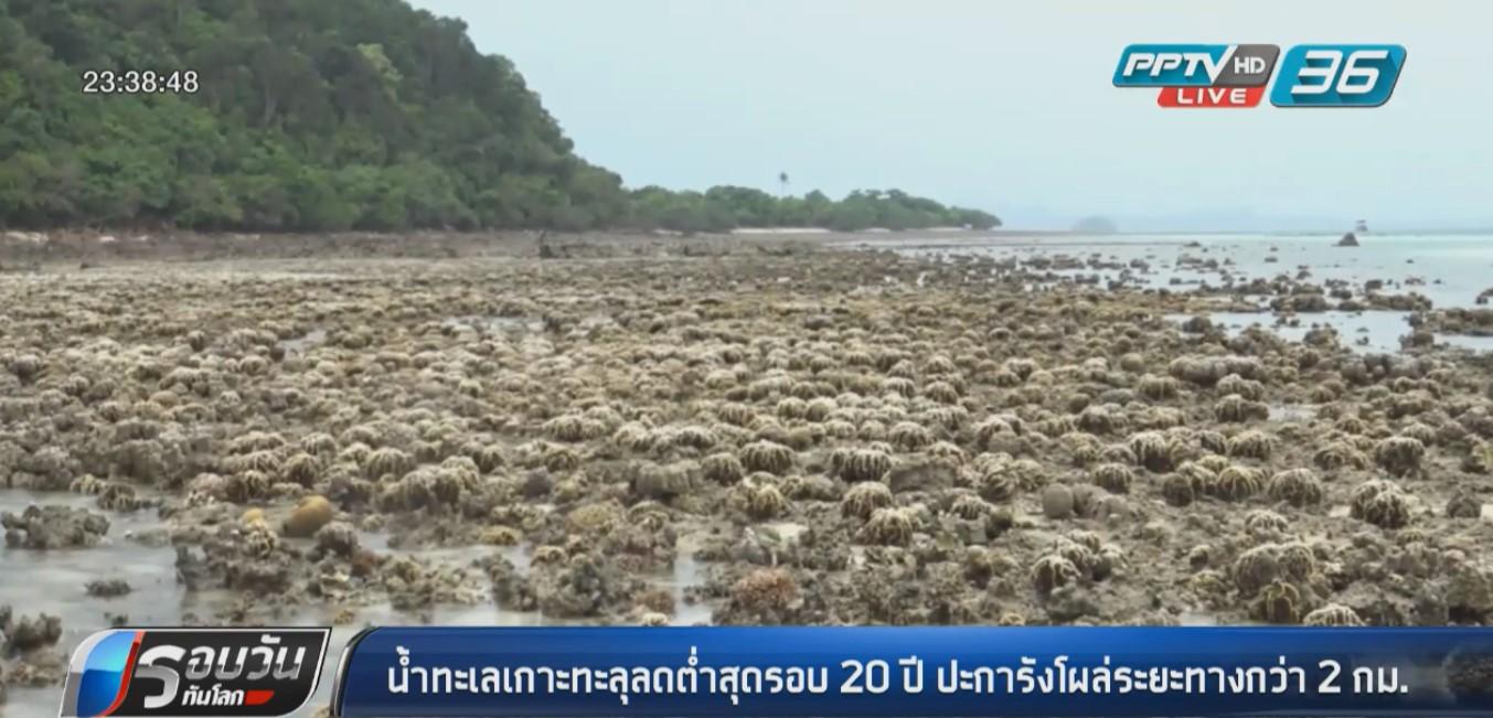 """น้ำทะเล """"เกาะทะลุ"""" ลดต่ำสุดรอบ 20 ปีปะการังโผล่กว่า 2 กม."""