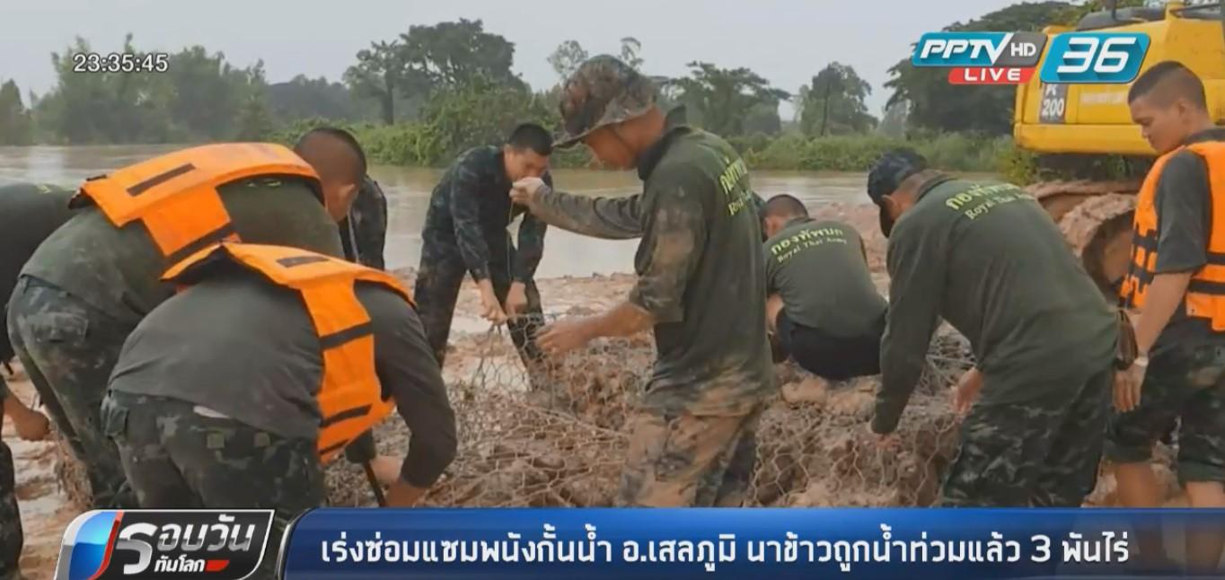 ร้อยเอ็ด เร่งซ่อมแซมพนังกั้นน้ำ นาข้าวถูกท่วมแล้ว 3,000 ไร่