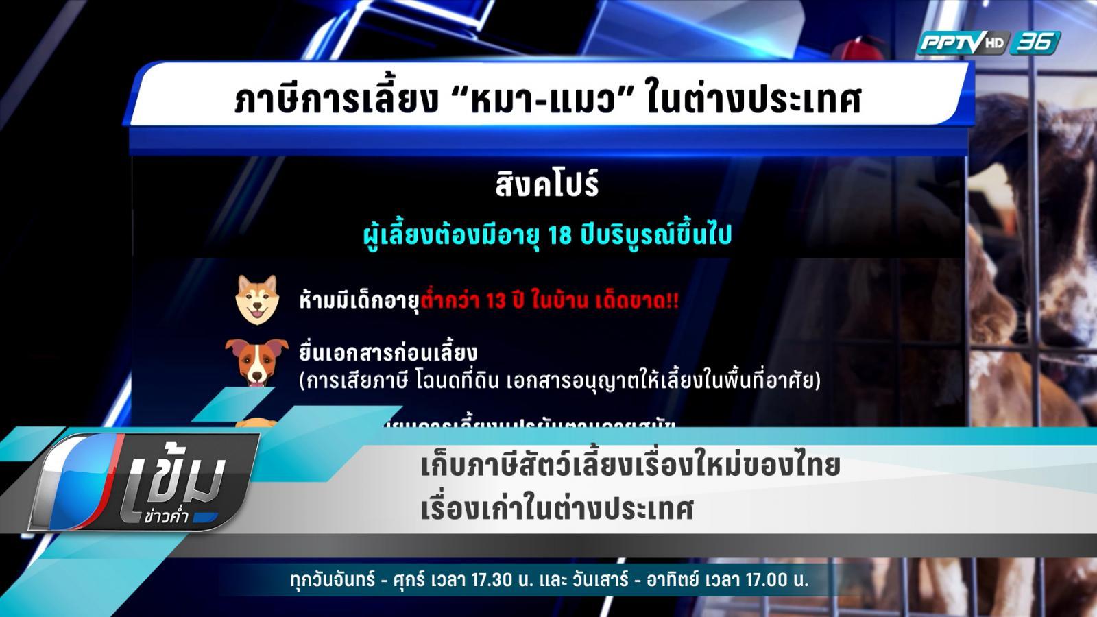 เก็บภาษีสัตว์เลี้ยงเรื่องใหม่ของไทย เรื่องเก่าในต่างประเทศ