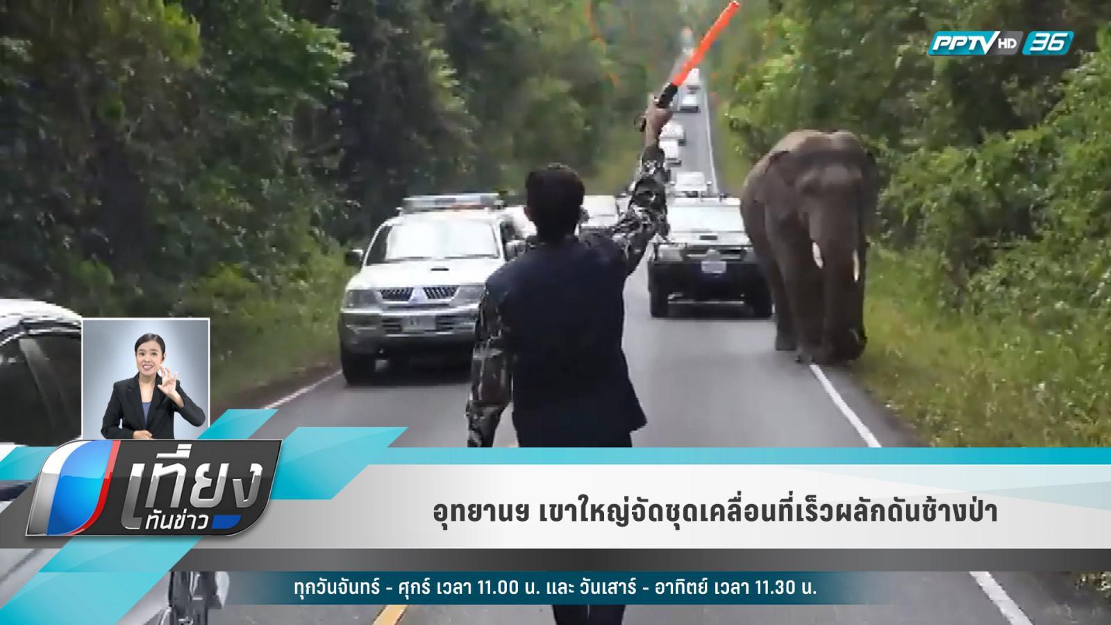 อุทยานฯเขาใหญ่ จัดชุดเคลื่อนที่เร็วผลักดันช้างป่า