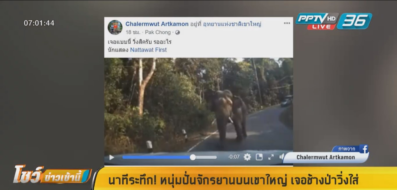ระทึก! หนุ่มปั่นจักรยานบนเขาใหญ่ เจอช้างป่าวิ่งใส่