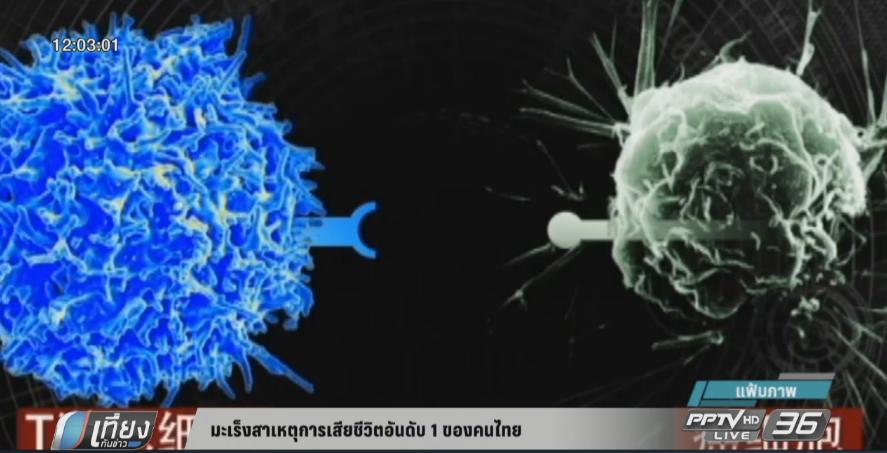 """""""มะเร็ง"""" สาเหตุตายอันดับ 1 ของคนไทย"""