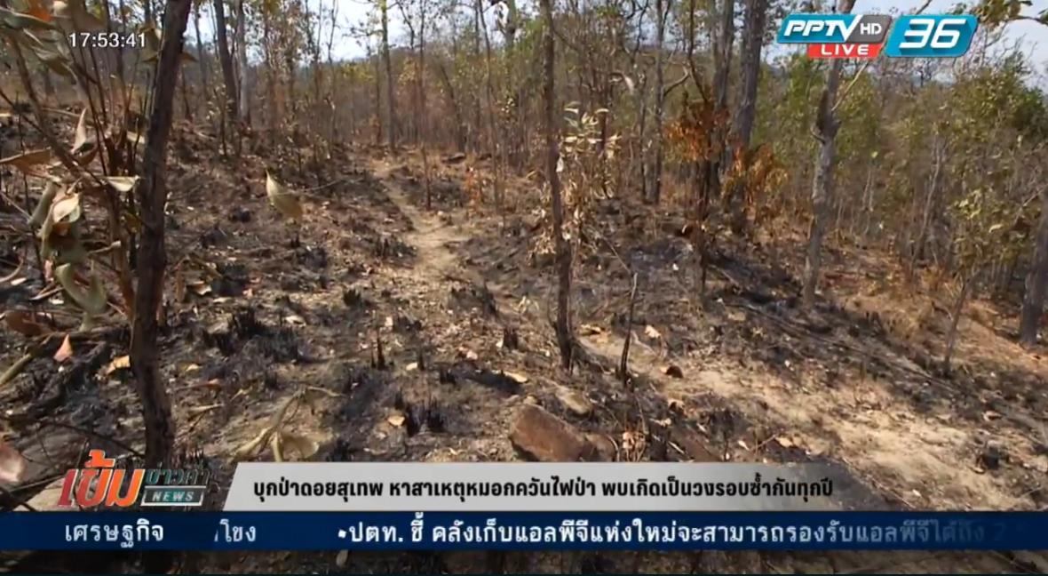 ทีมข่าว PPTV บุกป่าดอยสุเทพ หาสาเหตุหมอกควันไฟป่า (คลิป)