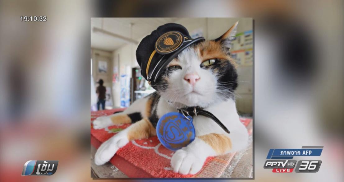 การรถไฟญี่ปุ่นฉลองแต่งตั้งแมวเป็นนายสถานีครบ 10 ปี