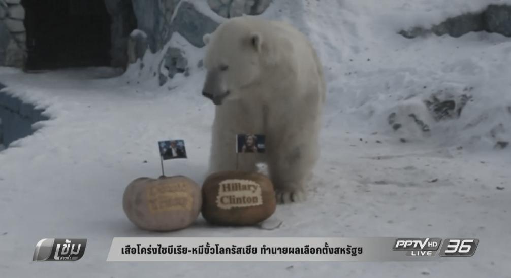 เสือโคร่งไซบีเรีย-หมีขั้วโลกรัสเซีย ทำนายผลเลือกตั้งสหรัฐฯ