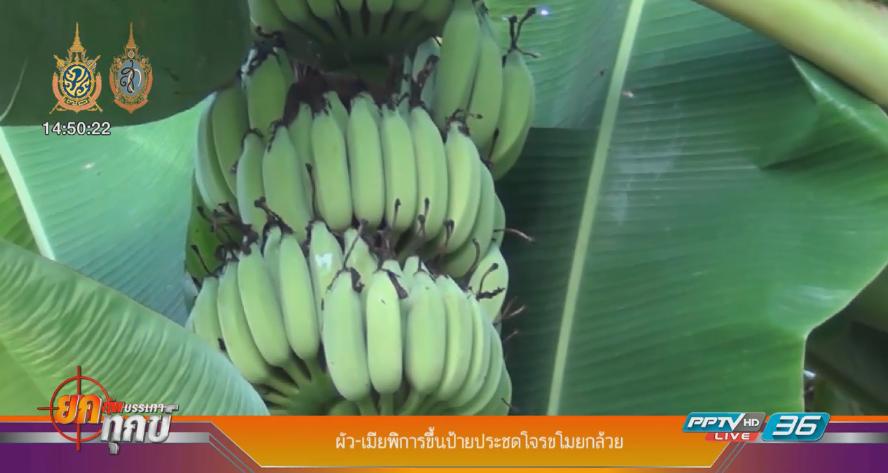 ผัว-เมียพิการขึ้นป้ายประชดโจรขโมยกล้วย