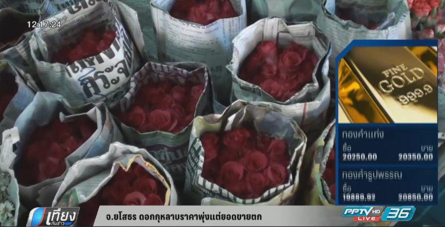 จ.ยโสธร ดอกกุหลาบราคาพุ่งแต่ยอดขายตก