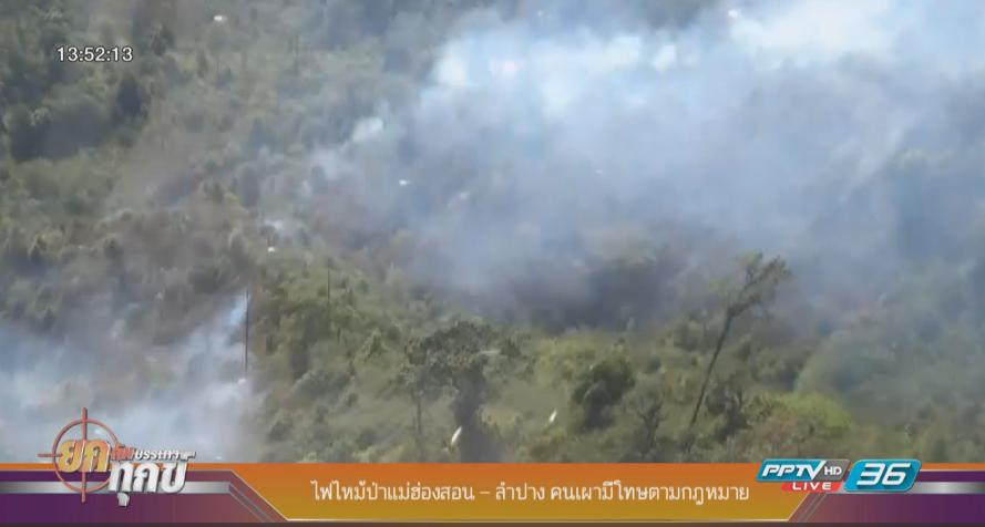ไฟไหม้ป่าแม่ฮ่องสอน – ลำปาง คนเผามีโทษตามกฎหมาย