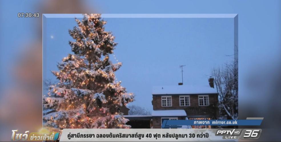 คู่สามีภรรยา ฉลองต้นคริสมาสต์สูง 40 ฟุต หลังปลูกมา 30 กว่าปี