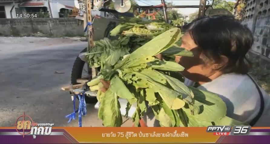 ยายวัย 75 ปั่นซาเล้งขายผักเลี้ยงชีพ
